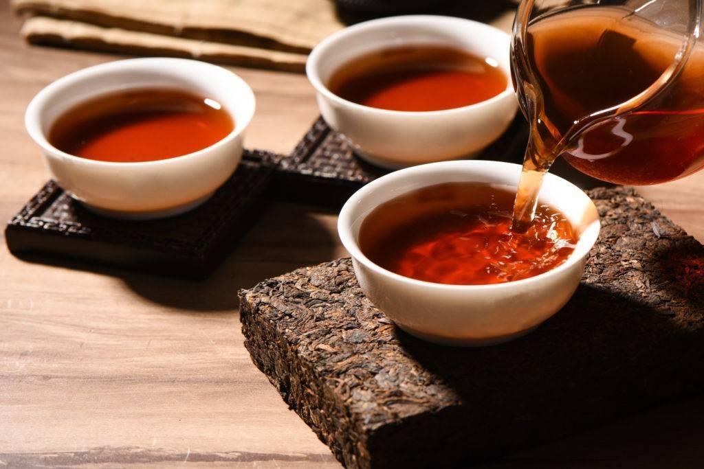 """Что нужно знать про чай пуэр / как правильно заваривать и пить этот напиток – статья из рубрики """"здоровая еда"""" на food.ru"""