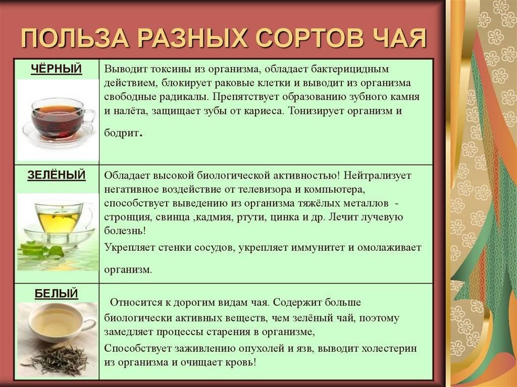Какие тонкости о чае пуэр нужно знать каждому