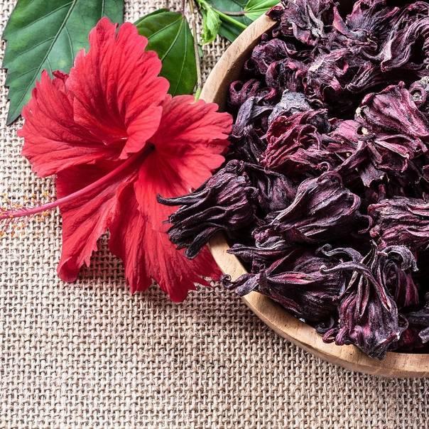 Каркаде: польза и вред, давление, как заваривать красный чай