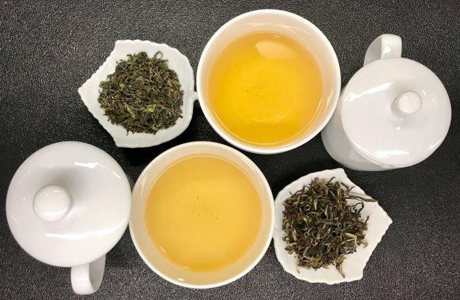 Применение чая улун для эффективного похудения